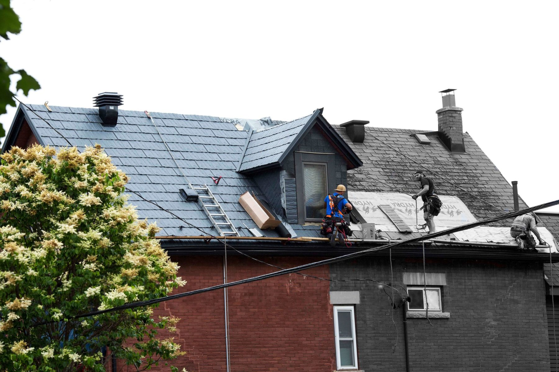 Ottawa Metal Roofing, Home, Roofs of Steel